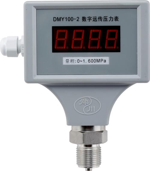 DMY100-2数字远传压力表