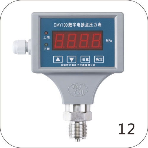 DMY100数字电接点压力表