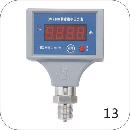 DMY100精密数字压力表(电池型)