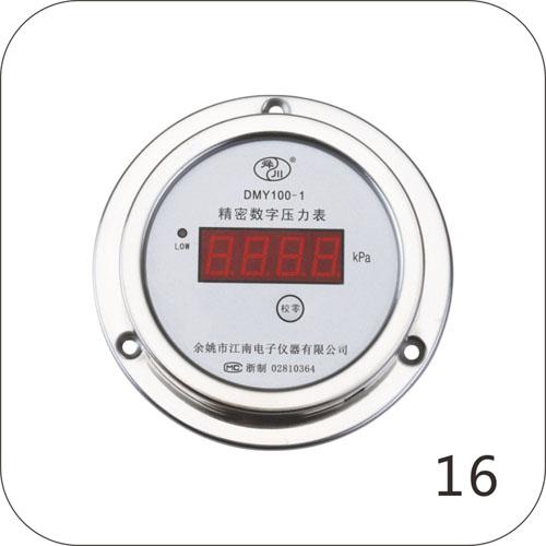DMY100-1精密数字压力表(轴向)