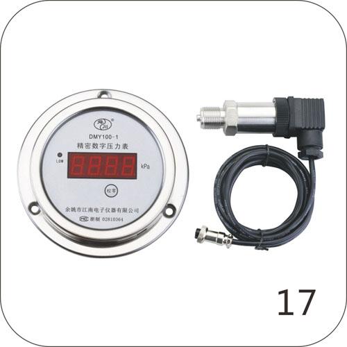DMY100-1精密数字压力表(分体式)